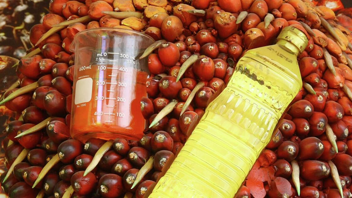 Рафінована пальмова олія промислового виготовлення відрізняється від «африканського» червоного навіть зовні / headtopics.com