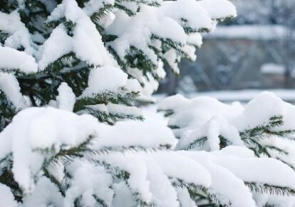 У Греції сильний снігопад зупинив роботу багатьох служб