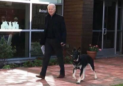 Джо Байден и его собака