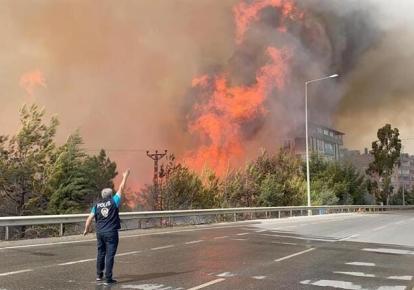 У Туреччині продовжують бушувати пожежі
