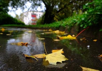 Погода в Україні: в деяких регіонах очікуються дощі