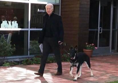 Джо Байден і його собака
