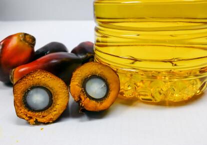 Пальмова олія є абсолютним рекордсменом за обсягом світового виробництва рослинних олій / Shutterstock