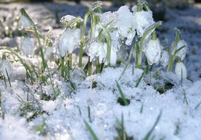 Синоптики обнародовали прогноз на март