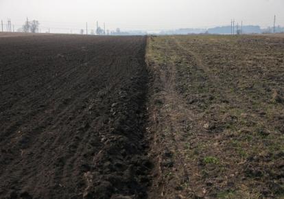 Рынок земли в Украине заработал 30 июля