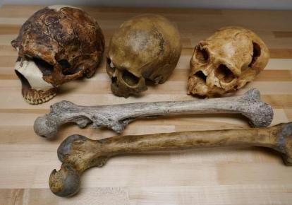 Черепы и кости, обнаруженные в Израиле