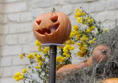 Декоративная тыква по случаю празднования Хэллоуина в Киеве