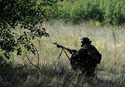 """Партія """"зелених"""" Німеччини запропонувала відновити експорт зброї в Україні"""