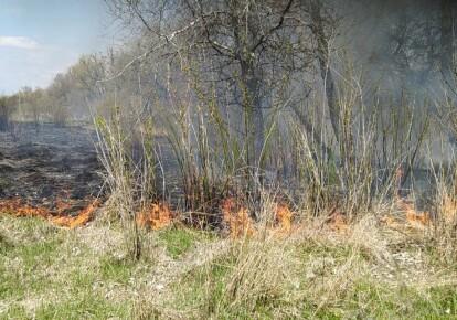Спасатели предупредили о повышенном риске возникновения пожаров