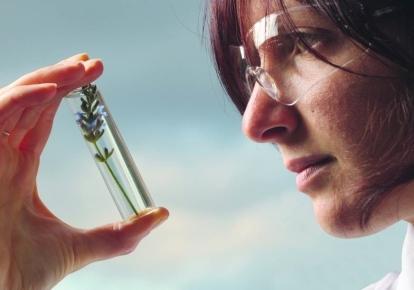 У 2021 р. компанія L'Oréal Україна запустила вже четвертий сезон програми для підтримки жінок-вчених