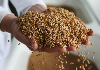В этом году собрали рекордный урожай ранних зерновых за всю историю Украины