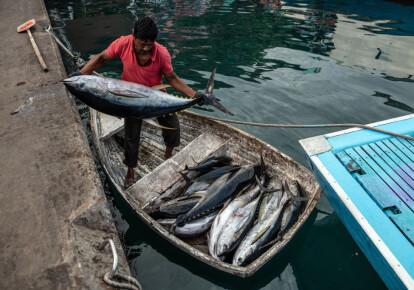 Рибак з жовтоперим тунцем на рибному ринку Мале на Мальдівах