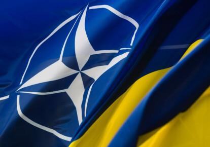 Германия поддерживает стремление Украины в НАТО. Фото: УНИАН