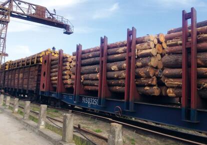 В Офисе президента заявили, что мораторий на экспорт леса из Украины неэффективный и должен быть пересмотрен