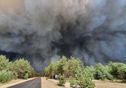 Пожежа в Луганській області. Фото: УНІАН