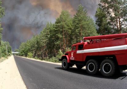 Пожар в Луганской области. Фото: УНИАН