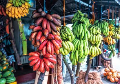 Различные сорта бананов на рынке