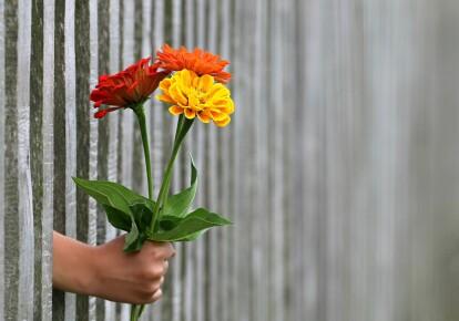 Наибольшее количество женщин хотят получить в подарок цветы