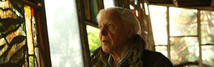 Человек как главное зло. Почему стоит посмотреть документальный фильм Дэвида Аттенборо «Жизнь на нашей планете»