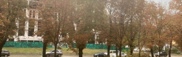 На Київ обрушилася негода: дерева повалено, затоплені вулиці (ФОТО, ВІДЕО)
