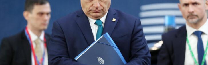 Копытом по Орбану. Чем Зеленский может огорошить премьера Венгрии