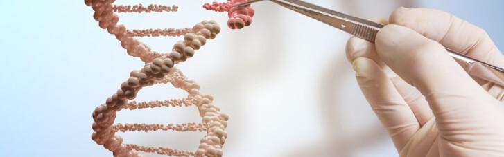 Базы ДНК: подарок человечеству или опасная игрушка