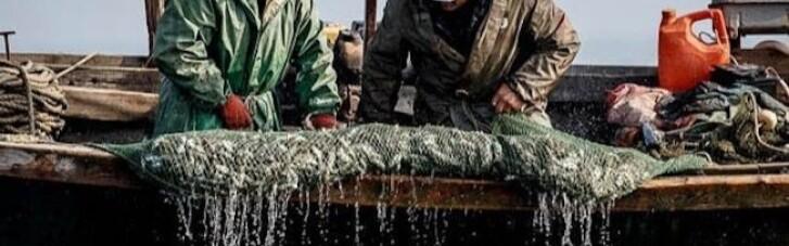 ФСБ задержала украинских рыбаков в 70 км от оккупированного Крыма