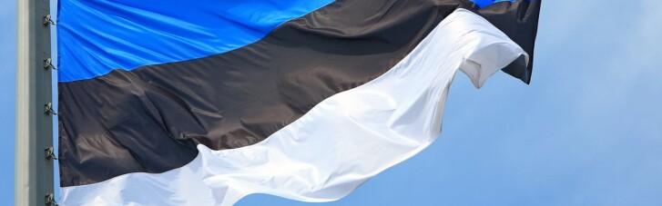 У Кулеби привітали Естонію з днем незалежності