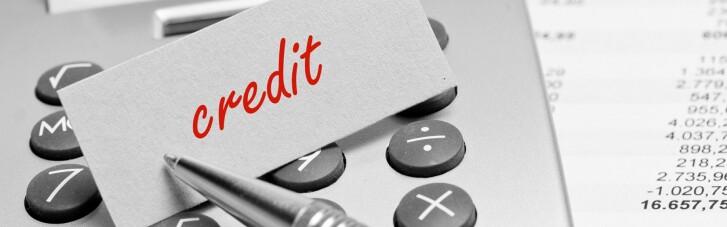 Бизнес получил более 10 тысяч льготных кредитов на 24 млрд грн