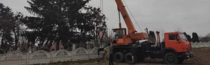 В Дубно головну новорічну ялинку привезли з кладовища (ВІДЕО)