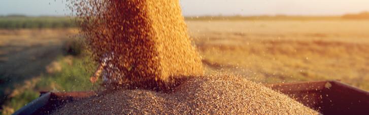 Прогодуємося самі. Як влаштована внутрішня торгівля агропродукцией в країні (ІНФОГРАФІКА)