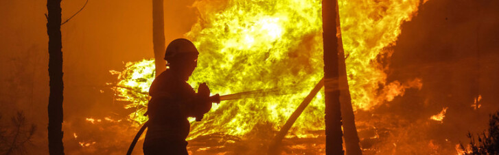 Вогняні жертви. Завжди в лісових пожежах винні люди