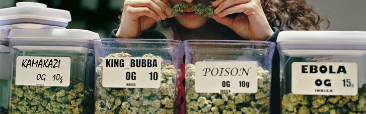 Рівняння на Польщу. Коли Україна скаже так медичної марихуани (ІНФОГРАФІКА)
