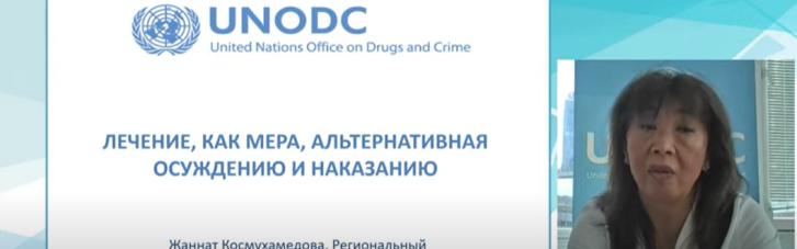 В ООН розповіли, до яких злочинів в сфері обігу наркотиків можна застосувати заходи, альтернативні кримінальним