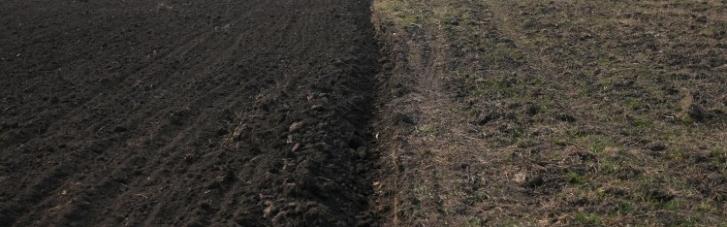 Скільки коштує гектар. Як запрацював ринок землі, і що буде далі