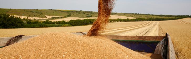 Зерно в обмен на газ. Что за сделку Египет предложил Украине