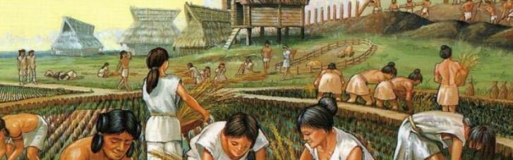 У пошуках першої цивілізації. Чому українці не можуть бути трипільцями