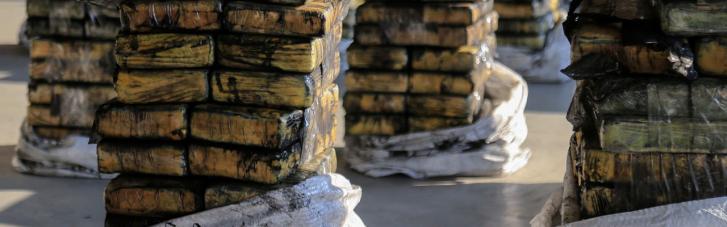 """Прибыльное """"хозяйство"""": в Нидерландах на ферме изъяли 3 тонны кокаина и 11,3 млн евро"""