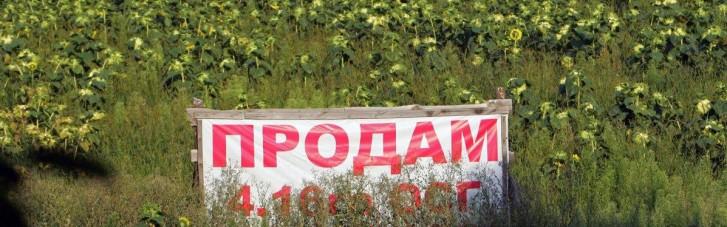 Рынок земли в Украине. Кто и как сможет продавать и покупать гектары с 1 июля