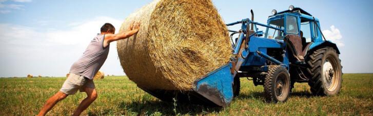 Кредити під гарантії. Як дрібним фермерам допоможуть подружитися з банками