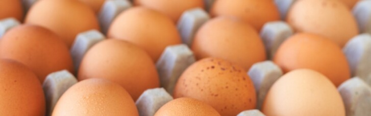 Одна з головних причин подорожчання яєць – тиск НАБУ на одного з великих виробників