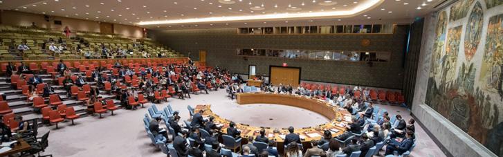 Рада безпеки ООН не підтримала пропозицію РФ щодо Боснії і Герцеговини