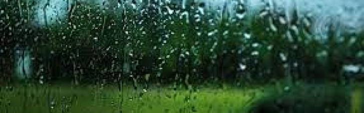 Прогноз погоды на понедельник: Украину накроют дожди