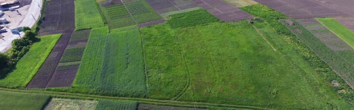 Объединенные общины  и аграрный бизнес. Как они делят деньги, землю и ответственность