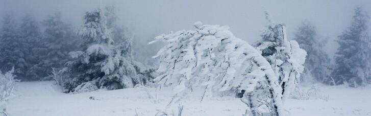 Снігопади і ожеледь: в Україні оголошено штормове попередження