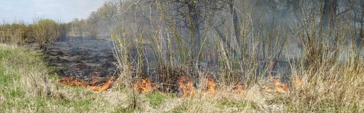ДСНС оголосила надзвичайний рівень пожежної небезпеки у половині регіонів України