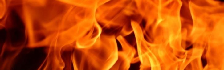 В Луцком зоопарке произошел пожар: погибли животные