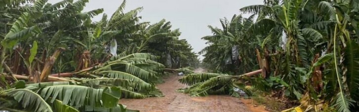 В Австралии из-за урагана 40 тысяч домов остались без света