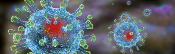 Колективний імунітет від коронавірусу неможливий, — учений