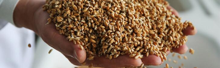 Гарант продовольчої безпеки України отримав сотні мільйонів збитків